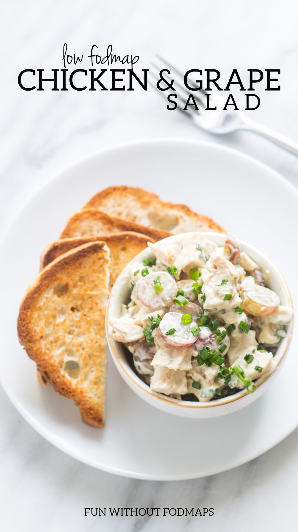 "A bowl of chicken salad with toast triangles on the side. In the white space above text reads ""Low FODMAP Chicken & Grape Salad."""