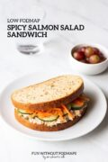 """Sandwich on a plate with a small bowl of red grapes and a glass of water in the background. In the white space, a black text overlay reads """"Low FODMAP Spicy Salmon Salad Sandwich."""""""